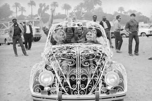 Модель Volkswagen Beetle - Stone Forest