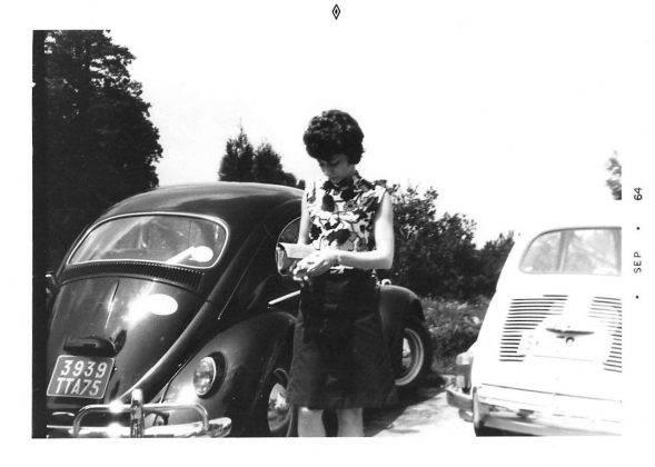 Модель авто Volkswagen Beetle - Stone Forest