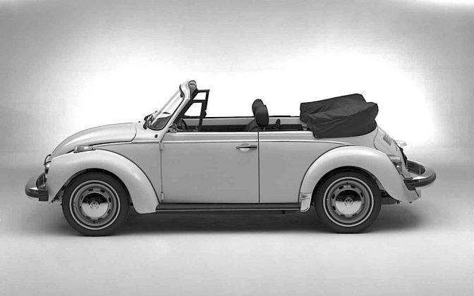 Модель автомобиля Фольксваген Жук - Stone Forest