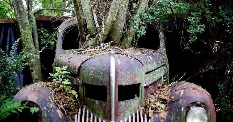 Олд кар сити США - Stone Forest