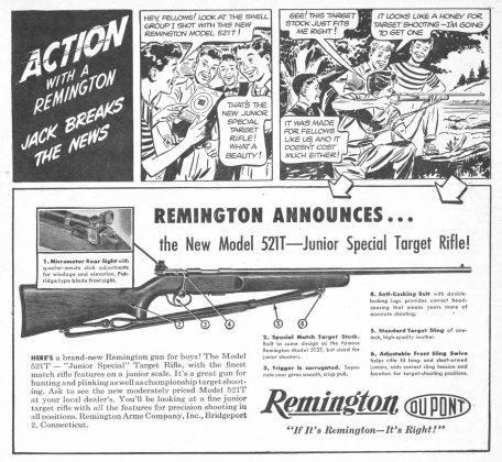 Плакат Ремингтон - Stone Forest