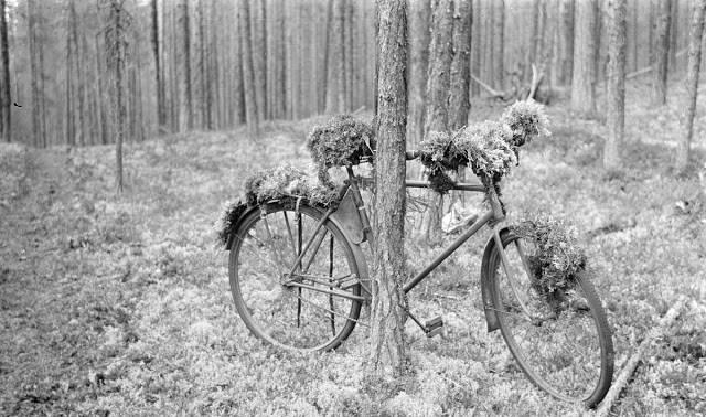 Закамуфлированный велосипед - Stone Forest