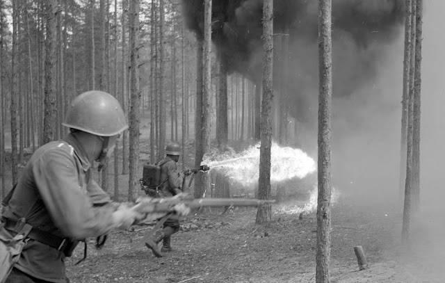 Финские огнеметчики - Stone Forest
