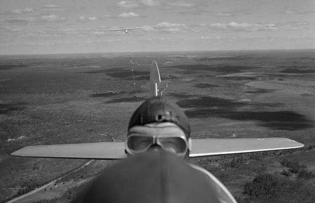 Финский летчик в Йямиярви - Stone Forest