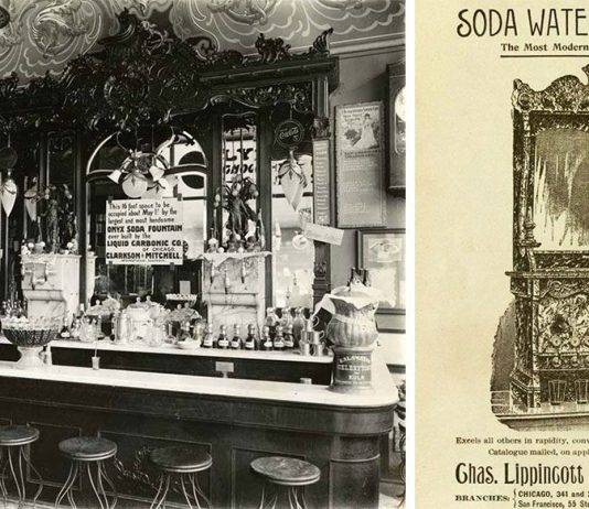 Soda Fountain - Stone Forest