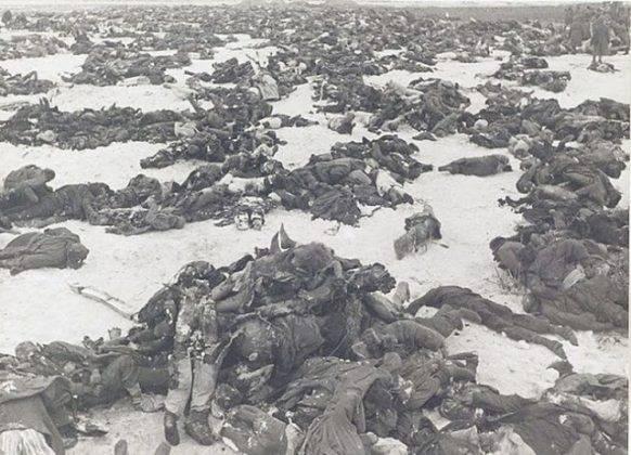 Фотографии Сталинградской битвы - Stone Forest
