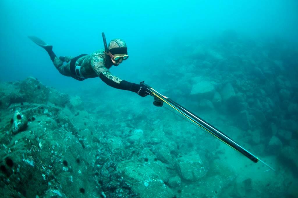 Сезон охоты на открытой воде
