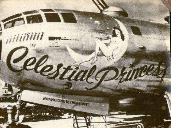 Рисунок на борту самолета - Stone Forest