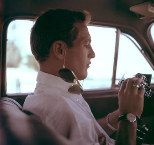 Пол Ньюман в кино - Stone Forest