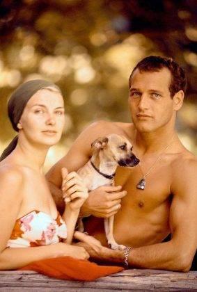 Муж и жена Пол Ньюман и Джоан Вудворд - Каменный лес Stone Forest