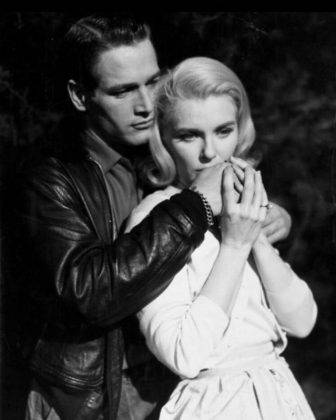 Голливудская пара Пол Ньюман и Джоан Вудворд - Каменный лес Stone Forest