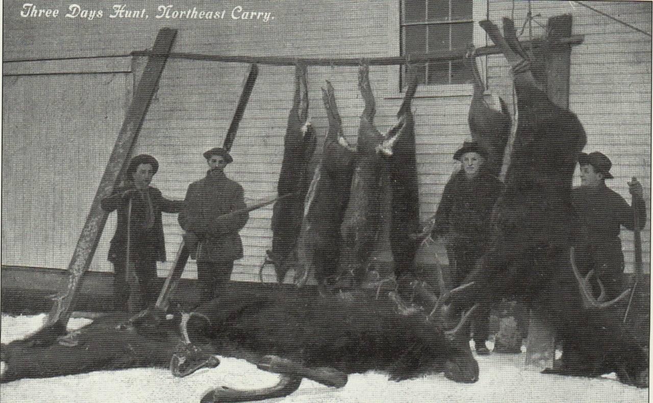 Охотники на лося - Stone Forest
