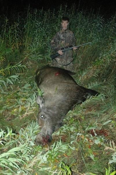 Убитый лось - Stone Forest