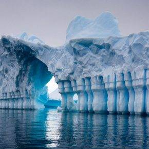Похолодание климата Земли - Stone Forest