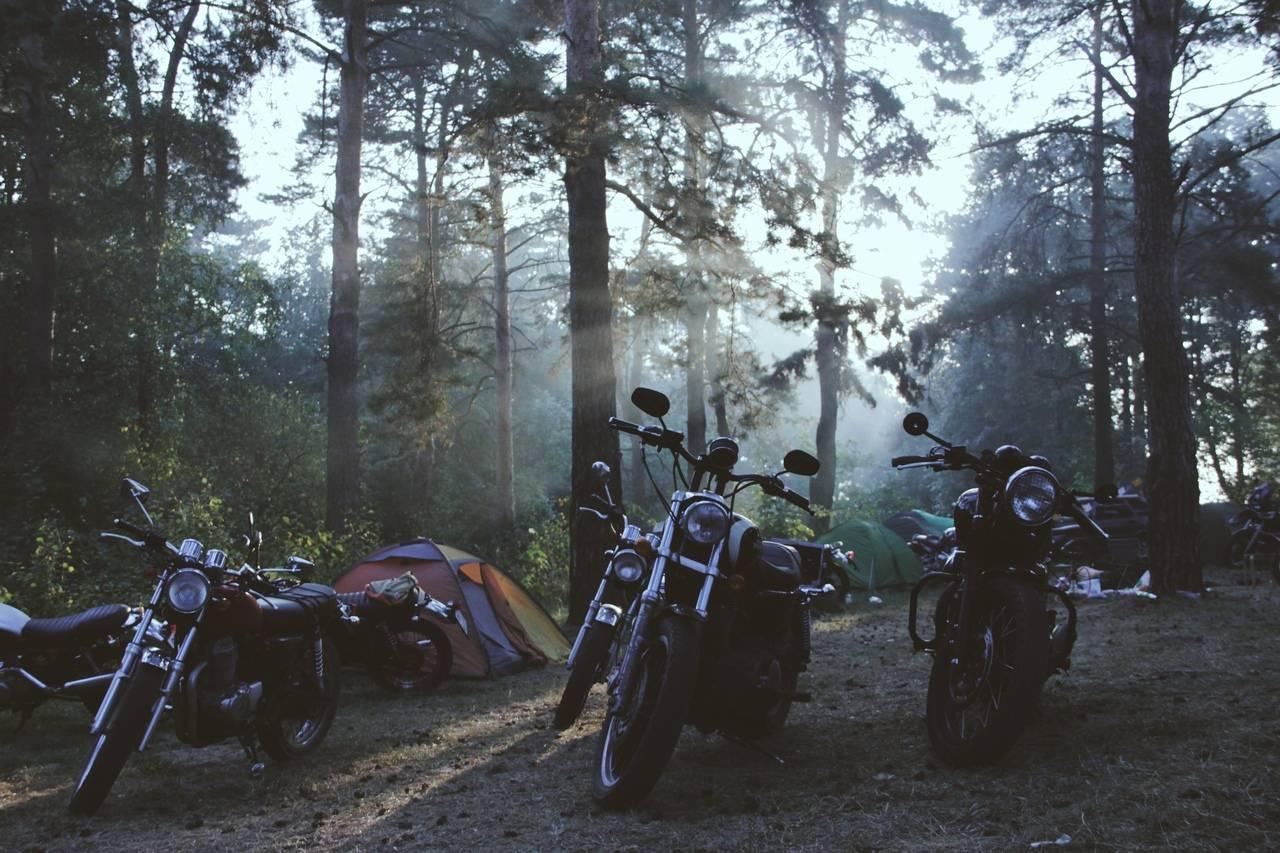 Боря Францкевич Countryside Custom Ride - Stone Forest