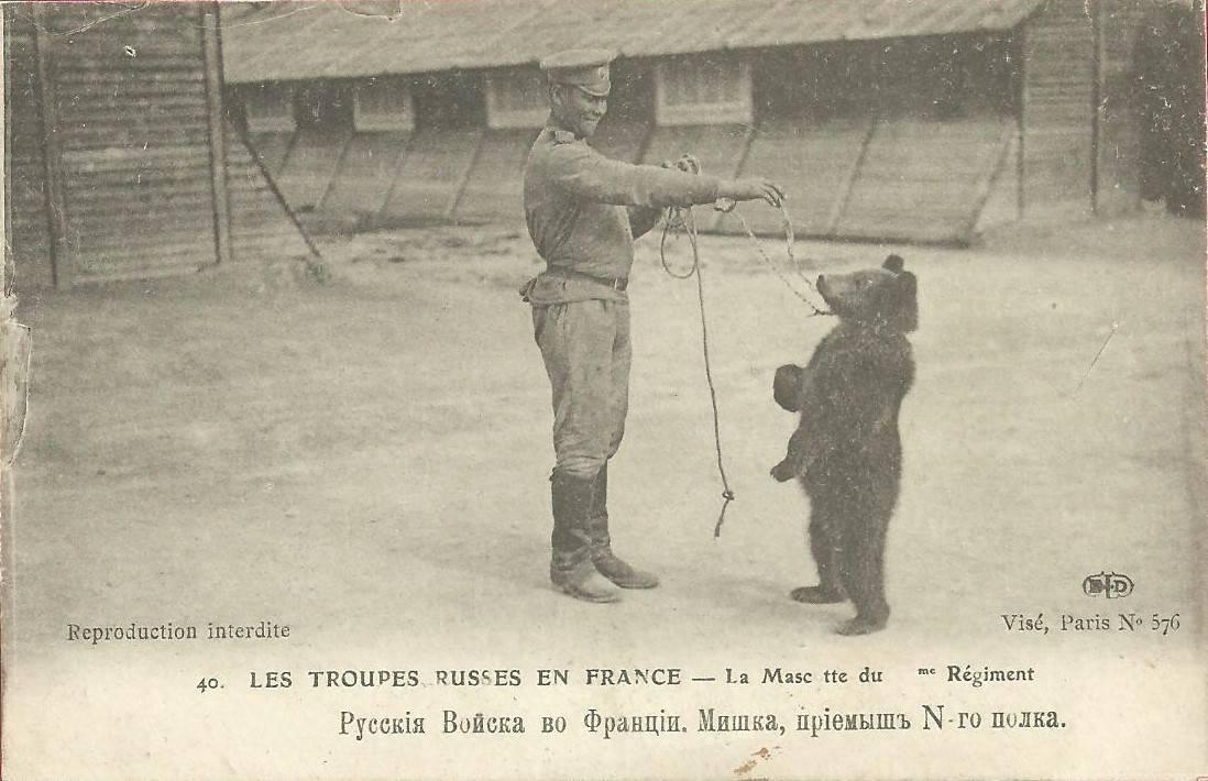Медведь Земляк в армии - Stone Forest