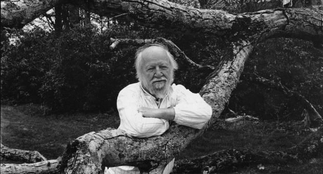 Писатель Уильям Голдинг - Stone Forest