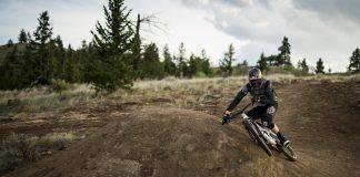 Брендон Семенюк - Каменный лес Stone Forest