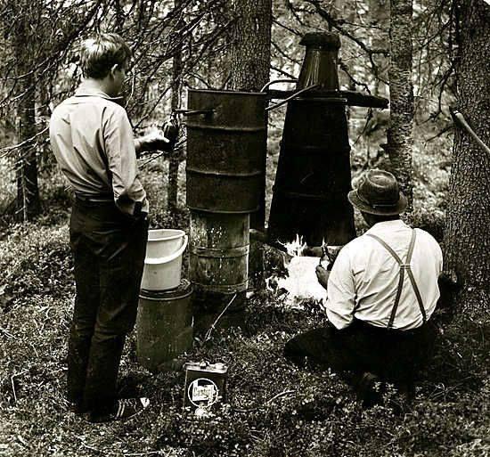 Сухой закон в Финляндии 1919 - Каменный лес Stone Forest
