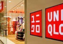 Японский бренд Uniqlo - Каменный лес Stone Forest