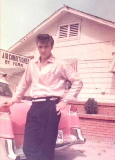 Розовый Cadillac Элвиса Пресли - Каменный лес Stone Forest