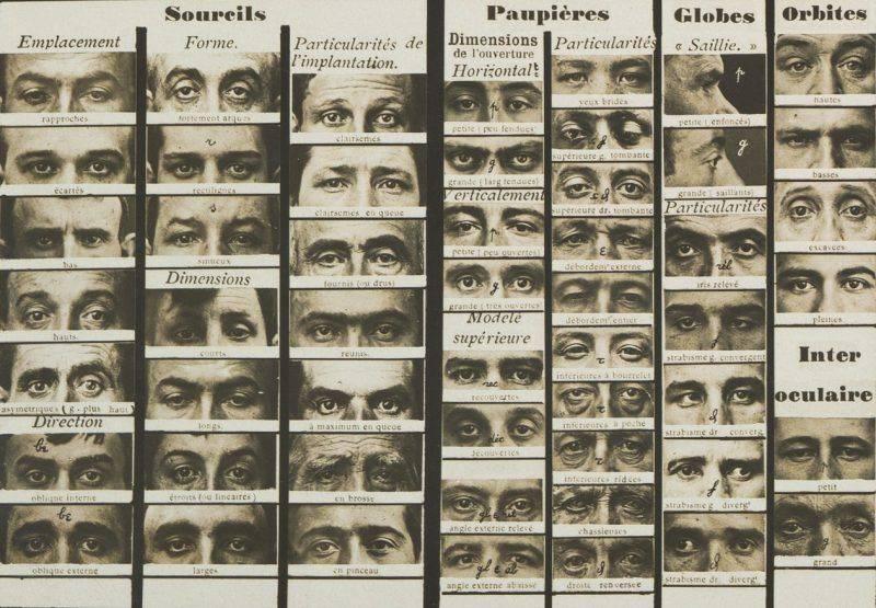 Синоптическая таблица Бертильона - Каменный лес