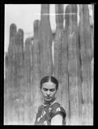 Фрида Кало, фото Мартина Мункачи - Каменный лес Stone Forest