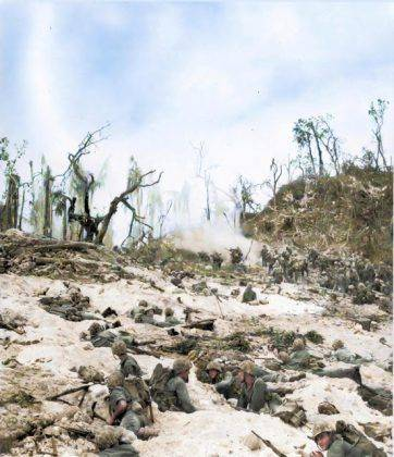 Тихоокеанский фронт второй мировой войны - Каменный лес Stone Forest