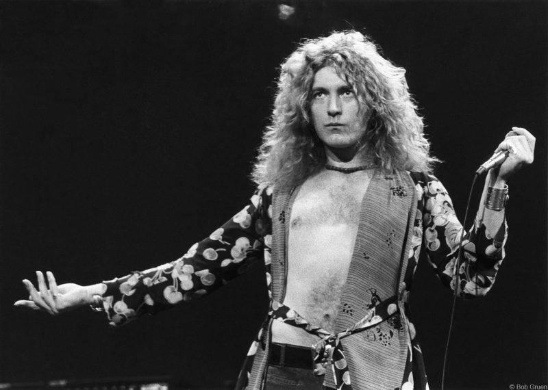 Рок звезды Led Zeppelin - Каменный лес Stone Forest