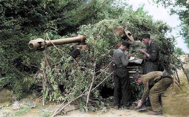 Высадка союзных войск в Нормандии - Каменный лес Stone Forest