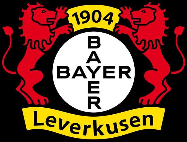 Логотип Байер 04 - Каменный лес Stone Forest
