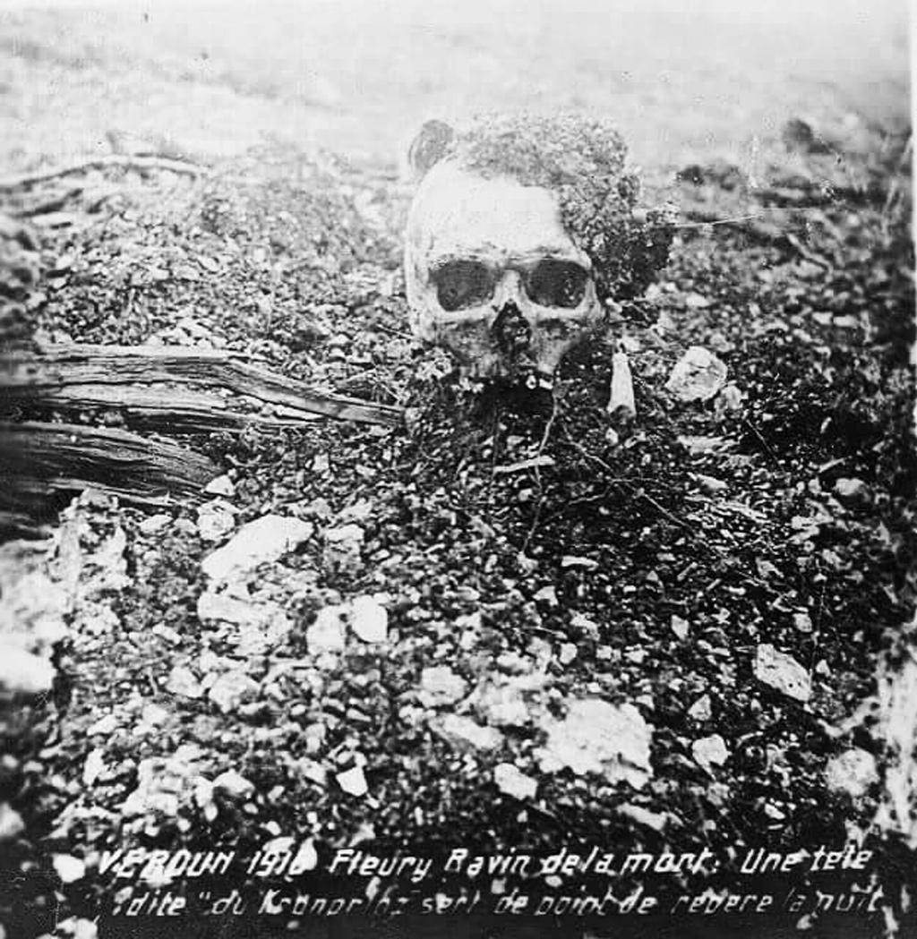 Битва при Вердене Верденская мясорубка - Каменный лес Stone Forest