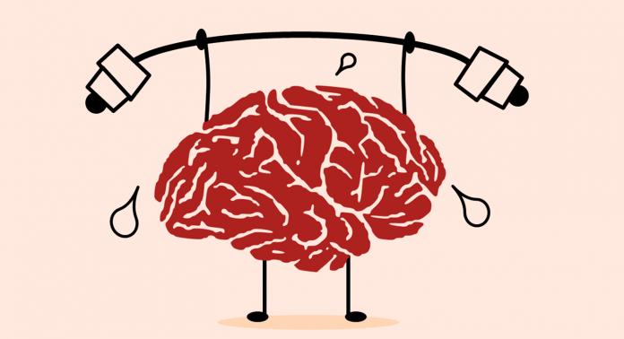 что такое brain fitness