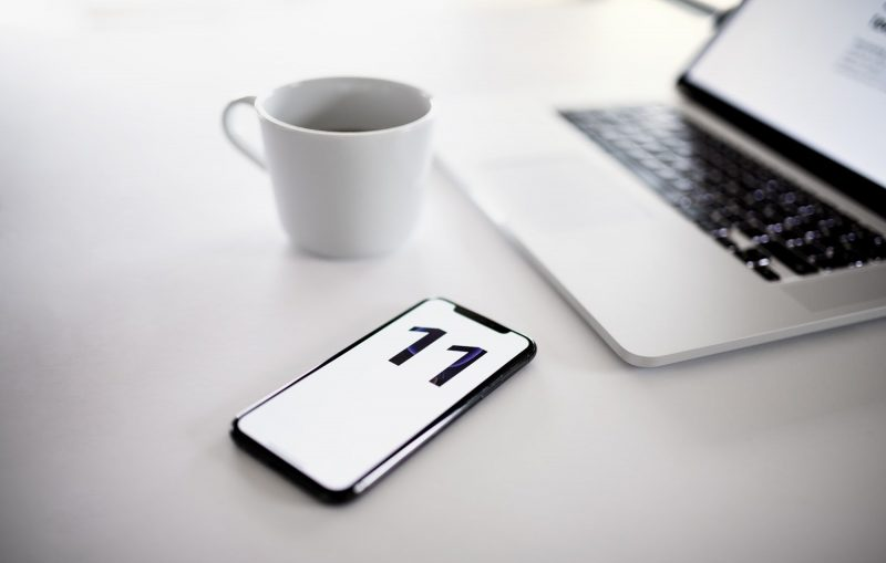 Купить iPhone 11 - Каменный лес Stone Forest