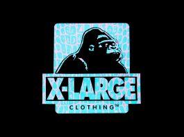 Xlarge logo - Каменный лес Stone Forest