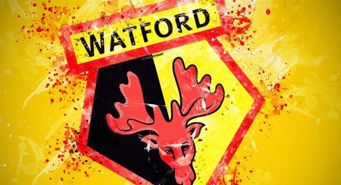 ФК Уотфорд - Каменный лес Stone Forest