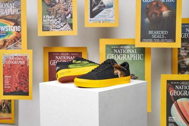 Кеды Vans x National Geographic - Каменный лес Stone Forest