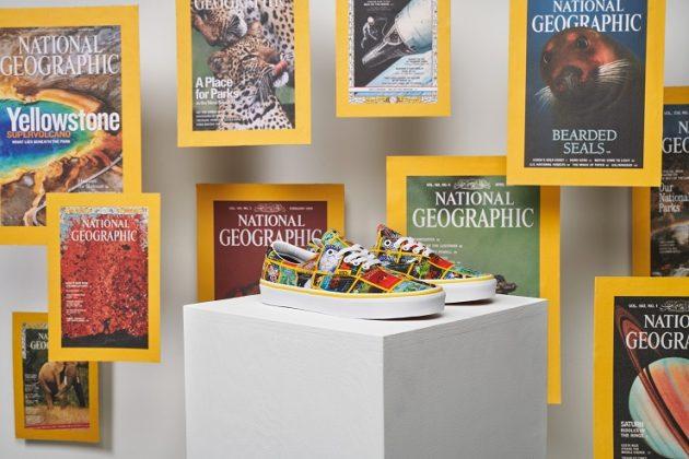 Обувь Vans x National Geographic - Каменный лес Stone Forest