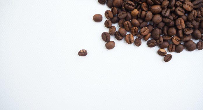 Кофейные волны - Каменный лес Stone Forest