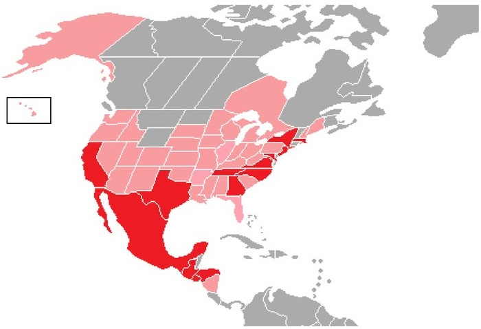 Карта распространения банды Мара Сальватруча - Каменный лес Stone Forest