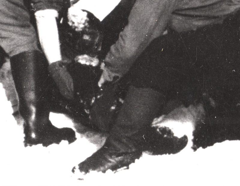 Тело неизвестного в черной рукавице - Каменный лес Stone Forest