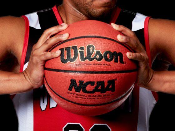 Wilson NCAA - Каменный лес Stone Forest