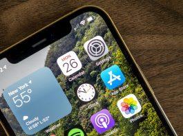 Замена флеш-памяти на смартфоне Apple - Каменный лес Stone Forest