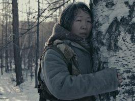 Фильм Пугало 2020 - Каменный лес Stone Forest