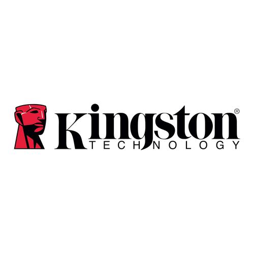 Логотип Kingston - Каменный лес Stone Forest