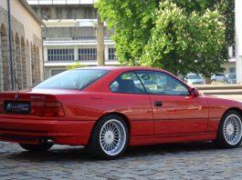 BMW 850 - Каменный лес Stome Forest